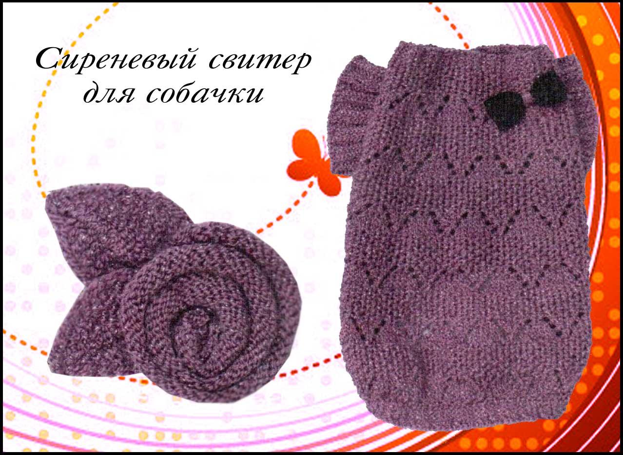 свитер для собаки спицами с бантиком