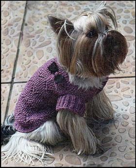 вязание для собак схемы